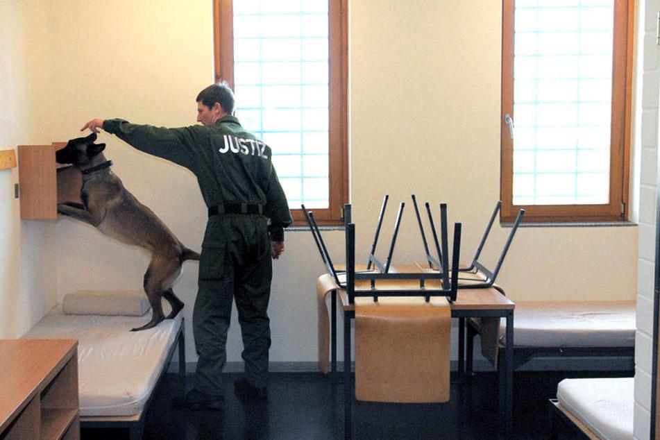 Die Justiz will einen zweiten Handy-Schnüffelhund anschaffen.