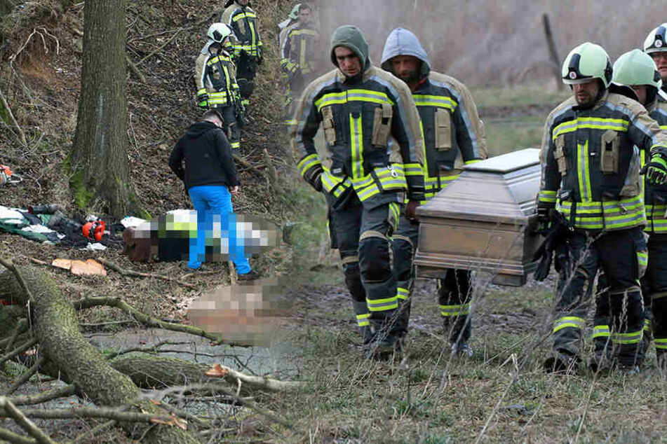 Schrecklicher Arbeitsunfall! Waldarbeiter (40) von Baum erschlagen