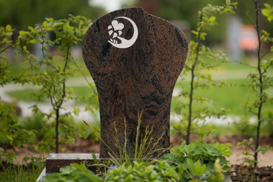 Hier ruhen Mensch und Tier gemeinsam in einem Grab. (Symbolbild)