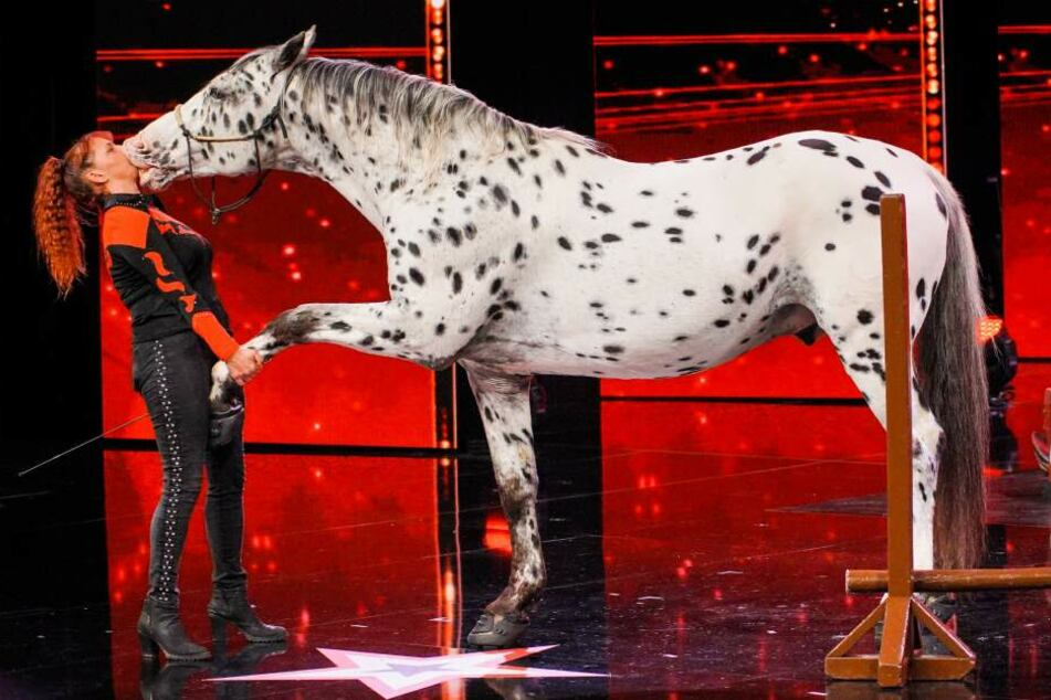 """Rosi Hochegger und ihr Pferd """"Scout"""". Pferdekuss Deluxe."""