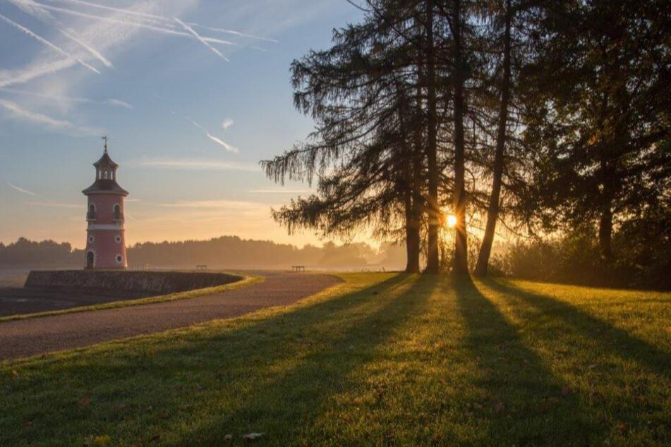 Ein wahrer Königsweg, den Moritzburg zu bieten hat.
