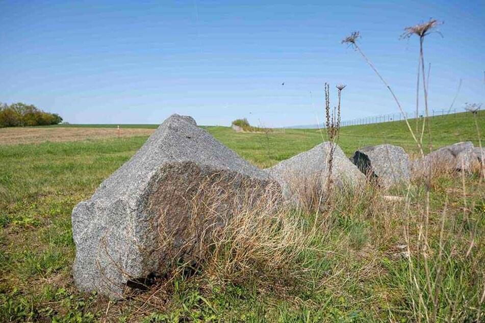 Die riesige Wiesenfläche ist momentan noch Teil eines Schutzgebietes.