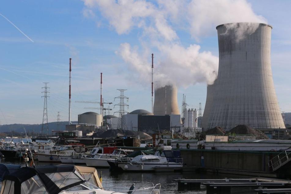 Wie der belgische Innenminister bestätigt, wurden bei Kontrollen Risse im Atomreaktor Tihange 2 entdeckt.