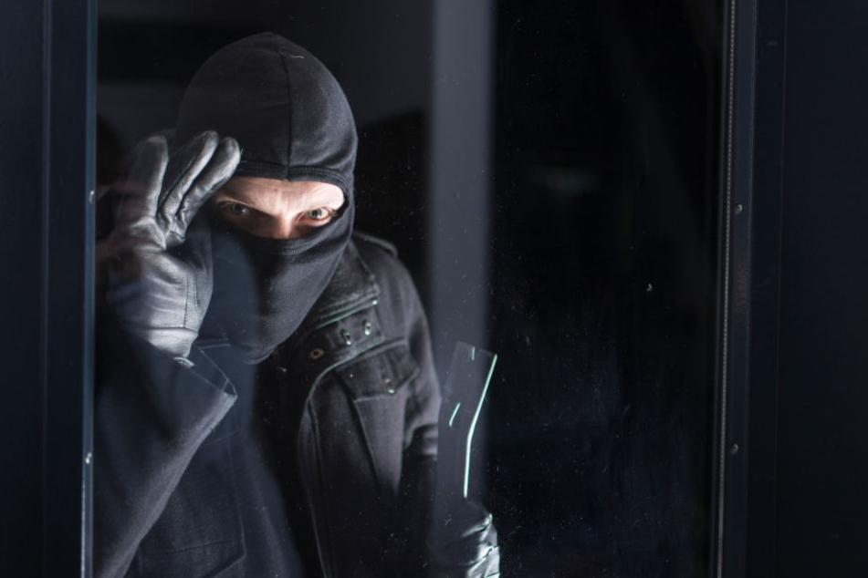 Ein Einbrecher wurde am Donnerstag in Berlin von einem Hund auf frischer Tat ertappt (Symbolbild).