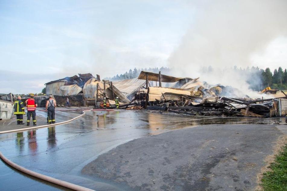 Feuerwehr kämpft weiter gegen Großbrand im Erzgebirge