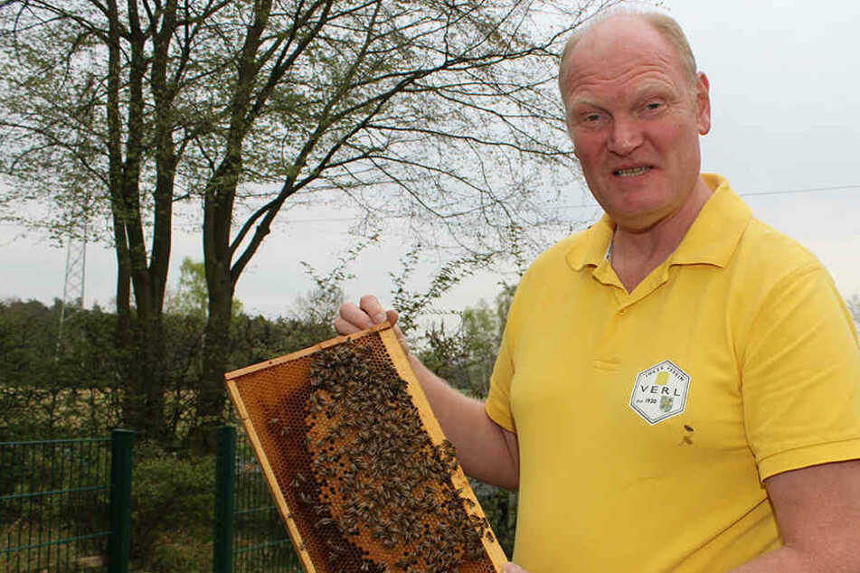 Imker Christoph Wilke ist in Aufregung wegen eines gefährlichen Pestizides.