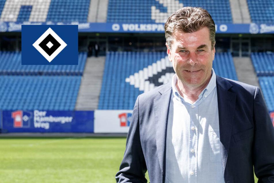 Fit für die zweite Zweitliga-Saison? HSV spickt Kader mit sieben neuen Spielern