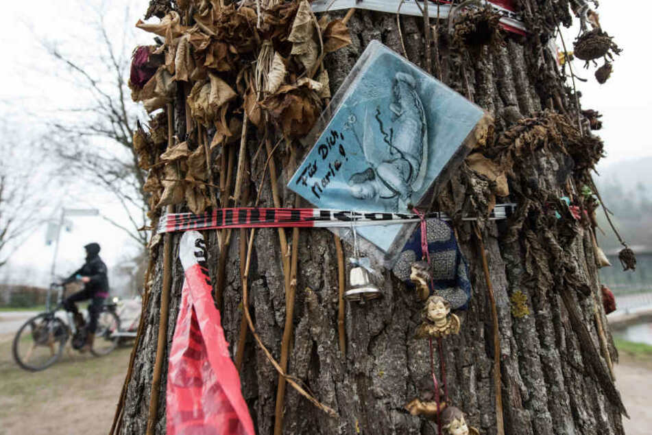 Diese Postkarte hing an einem Baum an der Dreisam, wo die Freiburger Studentin vergewaltigt wurde.