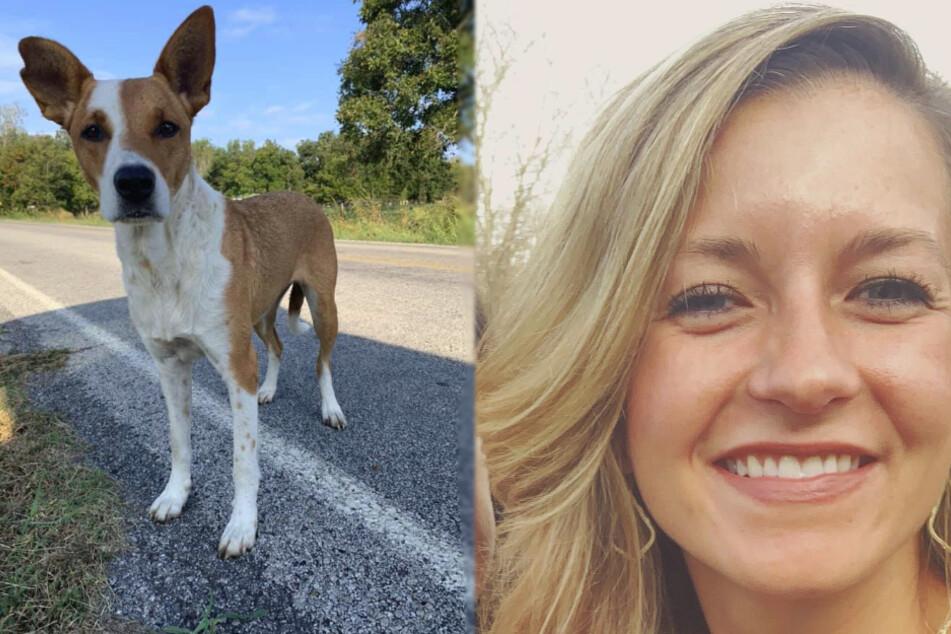 Frau scheitert erst an der Rettung eines Hundes: Dann gibt es eine unerwartete Wendung!