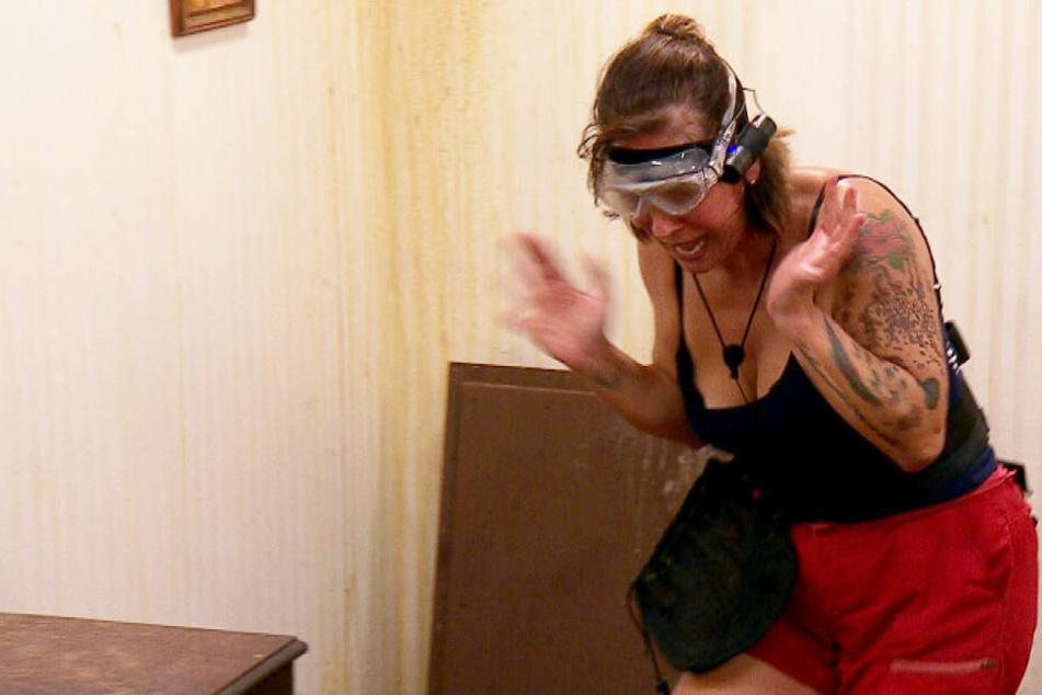 Dschungelcamp: Dschungelcamp Tag 14: Danni-Debakel! Selbst nominiert und Prüfung total verkackt