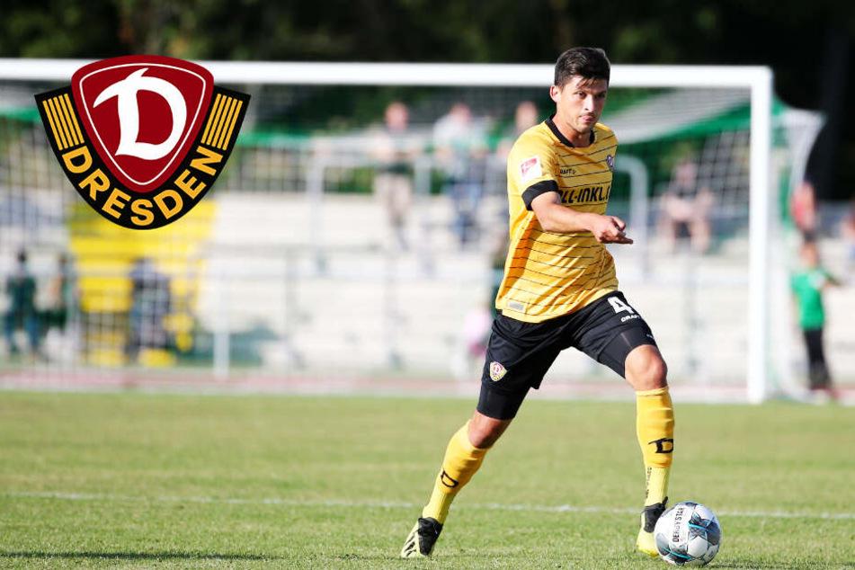 Dynamo Dresden: Wird Jannis Nikolaou jetzt Innenverteidiger?