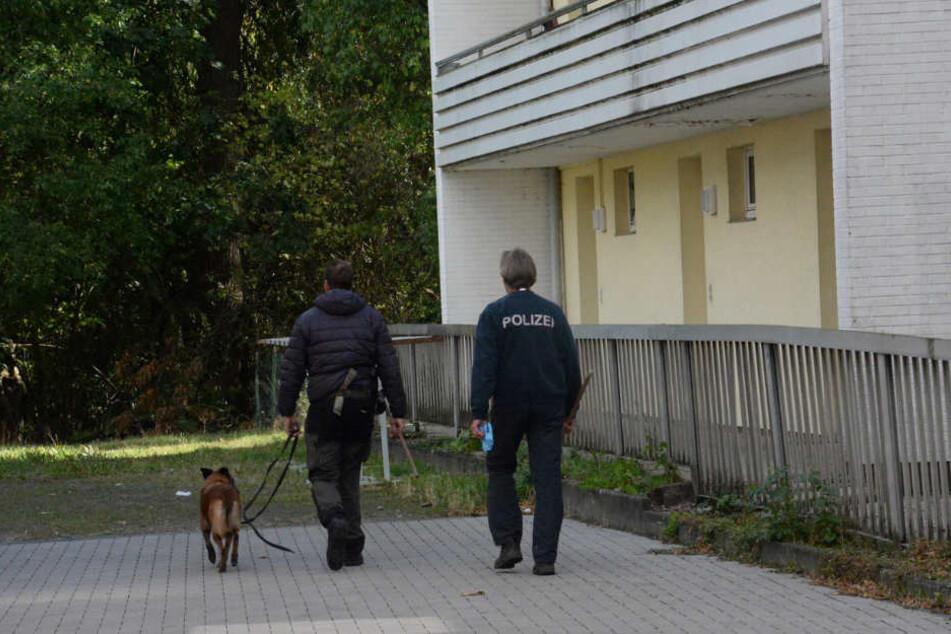 Mit einem Spürhund wurde der Tatort abgesucht.
