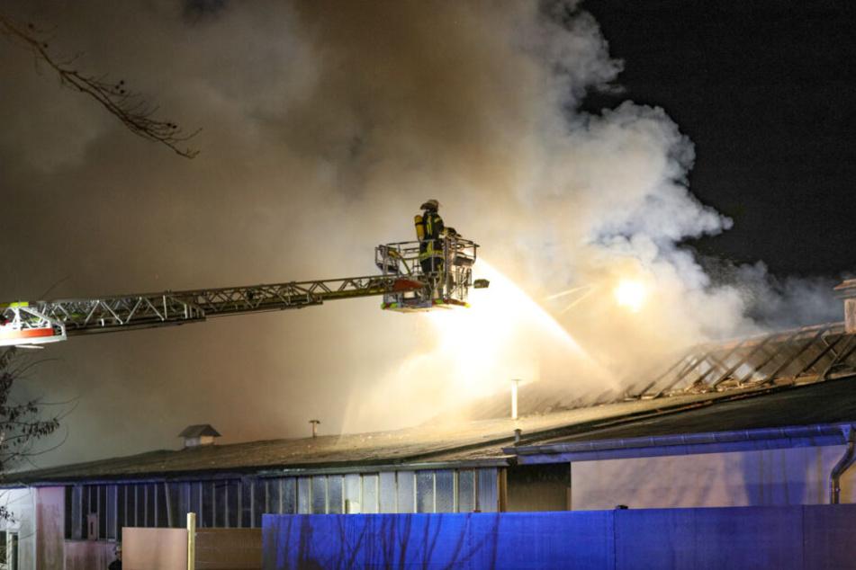 Die Feuerwehr konnte die brennende Lagerhalle erfolgreich löschen. Sie stürzte dabei teilweise ein.