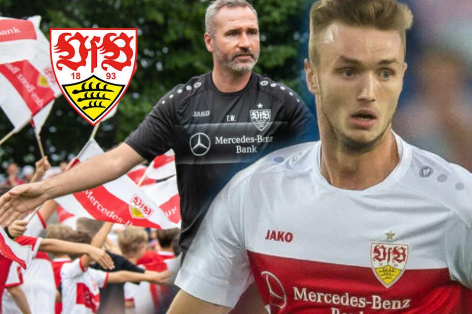 """""""Einfach Scheiße"""": Pechvogel Sasa Kalajdzic fällt erneut Monate aus, VfB-Coach Walter frustriert"""