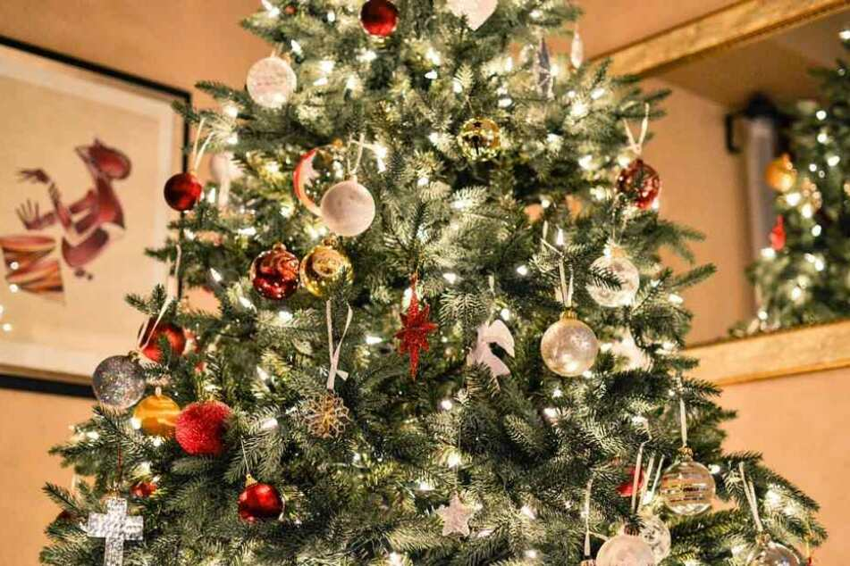 Wie finde ich für mich den perfekten Weihnachtsbaum?