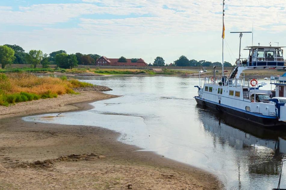 Niedrigwasser: Auf der Elbe können kaum noch Schiffe fahren