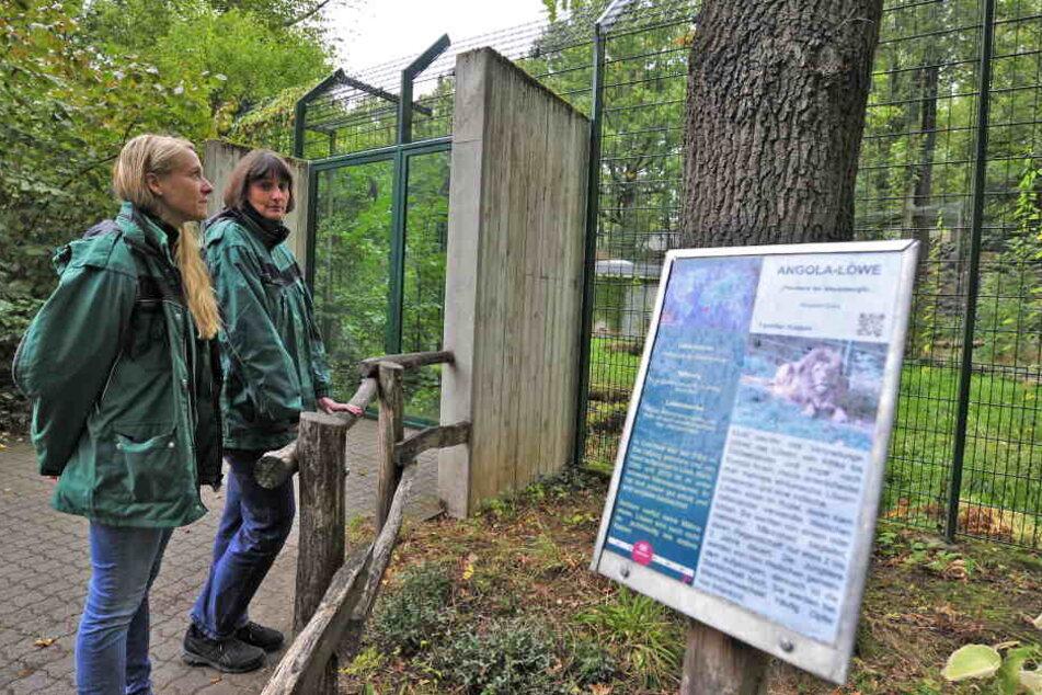Tierpark-Leiterin Anja Dube (48) und Tierärztin Peggy Heinze (41) schauen traurig in Maliks leeres Gehege.