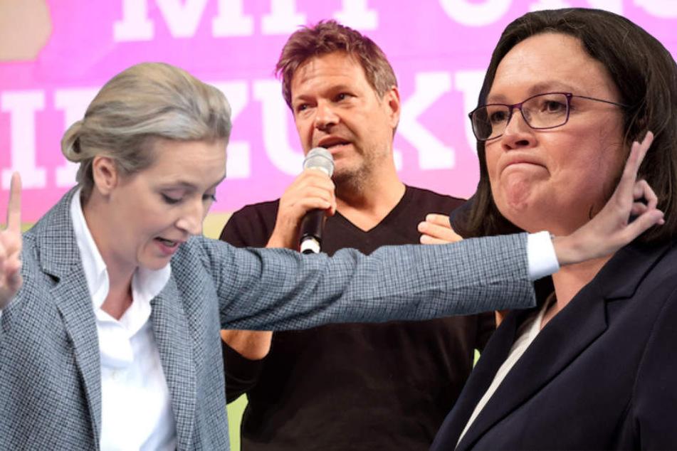 Die Grünen um Co-Chef Robert Habeck (49) und die AfD von Alive Weidel (39) haben die SPD der Vorsitzenden Andrea Nahles (48) überholt. (Bildmontage)
