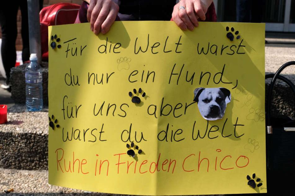 Mit Plakaten wie diesen demonstrierten die Teilnehmer für Chico.