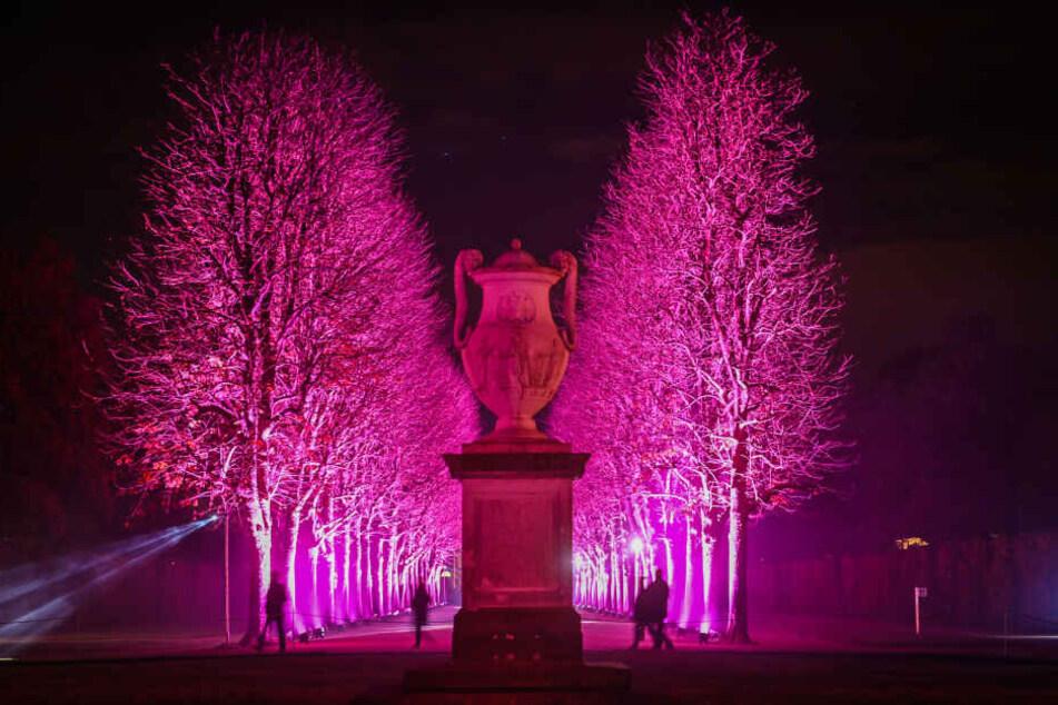 Besonders am Abend erfreut der Christmas Garden seine Besucher mit kreativen Lichtinstallationen.