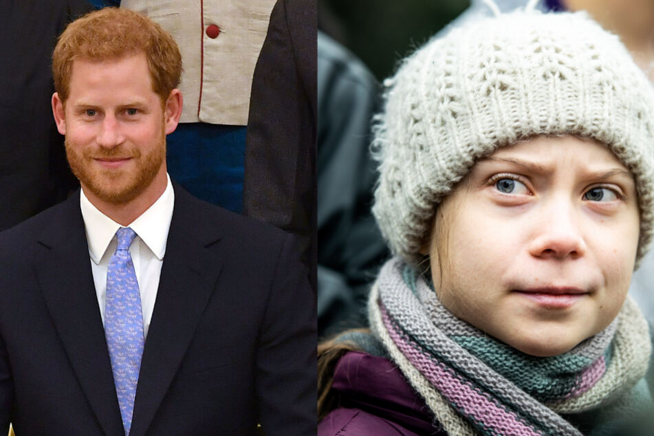 Ging Fake-Greta auf den Leim: Ex-Royal Harry.
