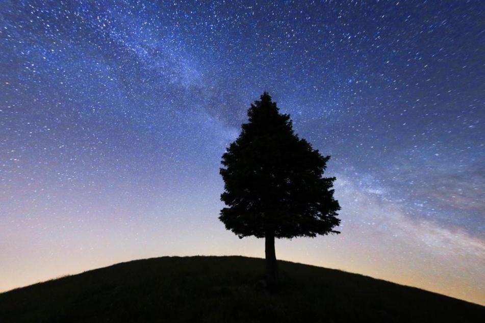 Forscher machen unglaubliche Entdeckung im Weltall
