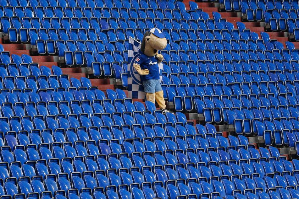Schalke-Maskottchen Erwin. Gibt's nächstes Jahr doch noch einmal Erstliga-Fußball zu sehen? Hoffnung gibt es zumindest wieder ein wenig.