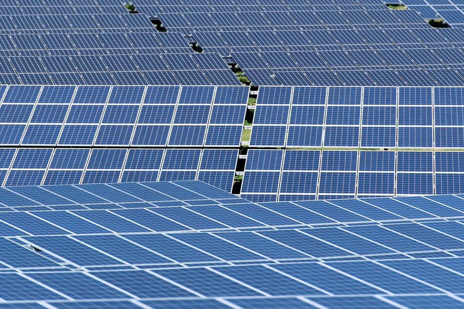 Aus einem Solarpark in Körbelitz wurden 152 Module gestohlen. (Symbolbild)