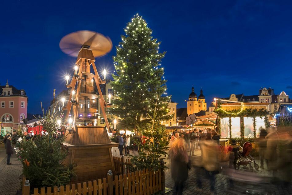 Plauen sucht zwei stattliche Weihnachtsbäume für den Kloster- und den Altmarkt.