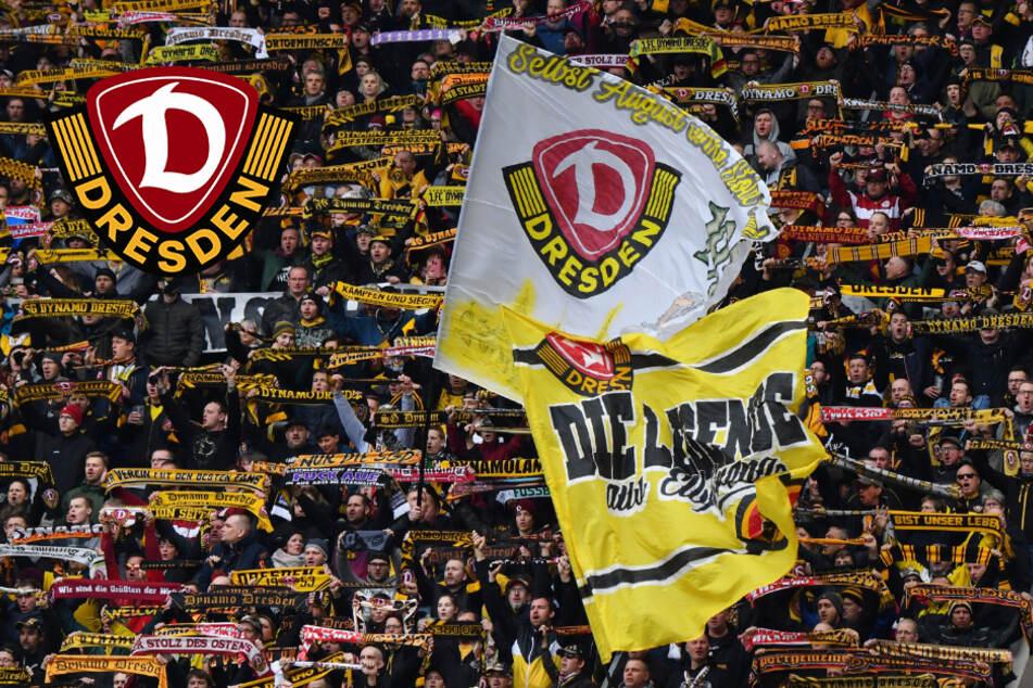 Dynamo Dresden: Wann dürfen wieder Zuschauer ins Rudolf-Harbig-Stadion?