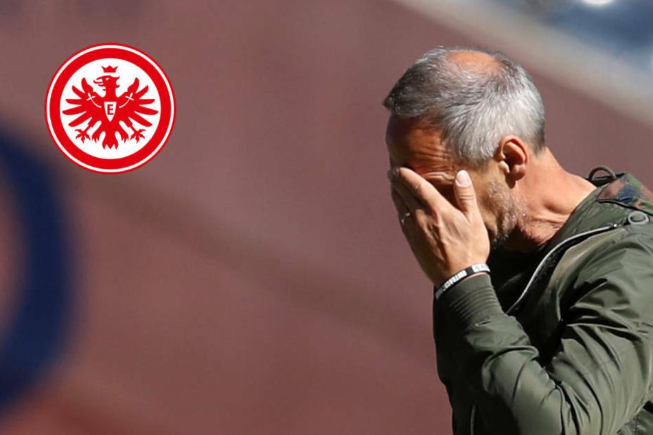 """Ernüchterung bei Eintracht Frankfurt: """"sehr, sehr ärgerliche Niederlage"""""""