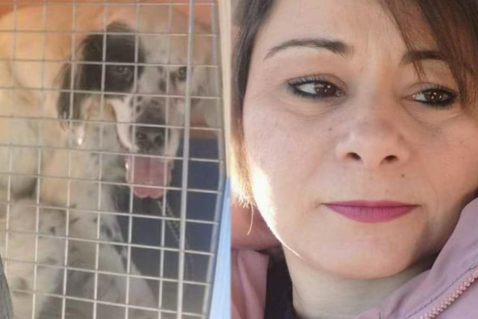 Animal shelter worker feels terrible for the dog she picks up