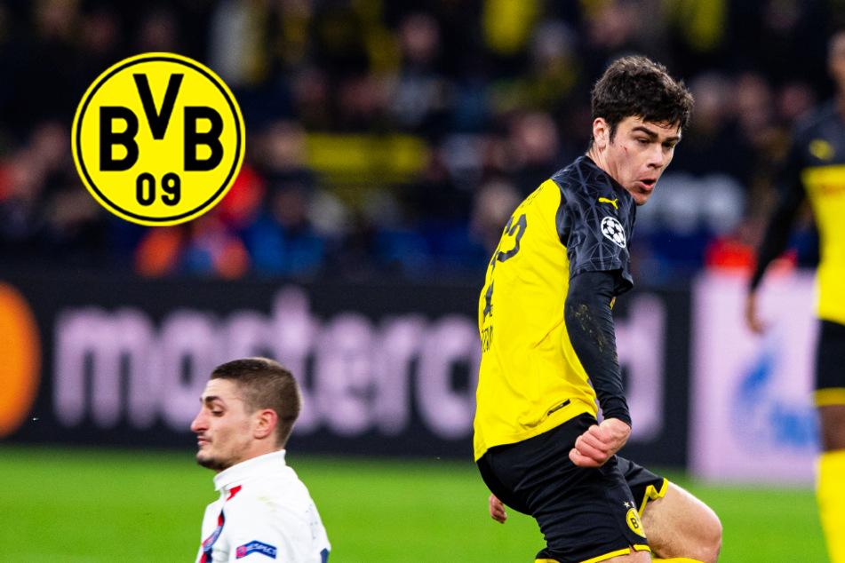 BVB soll Vertrag mit Youngster Giovanni Reyna bereits verlängert haben