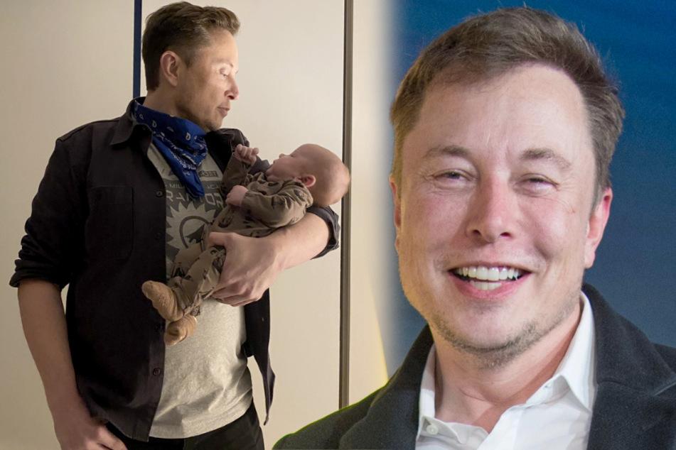 Warum Elon Musk mit diesem Tweet für wilde Spekulationen sorgt!
