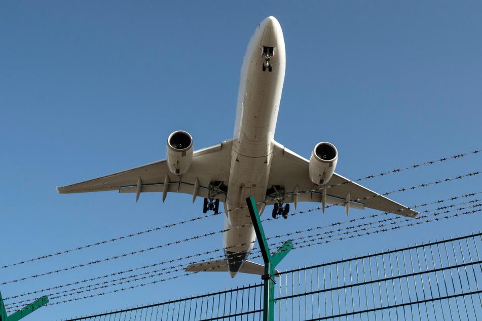 Ein Flugzeug landet auf dem Flughafen Frankfurt.