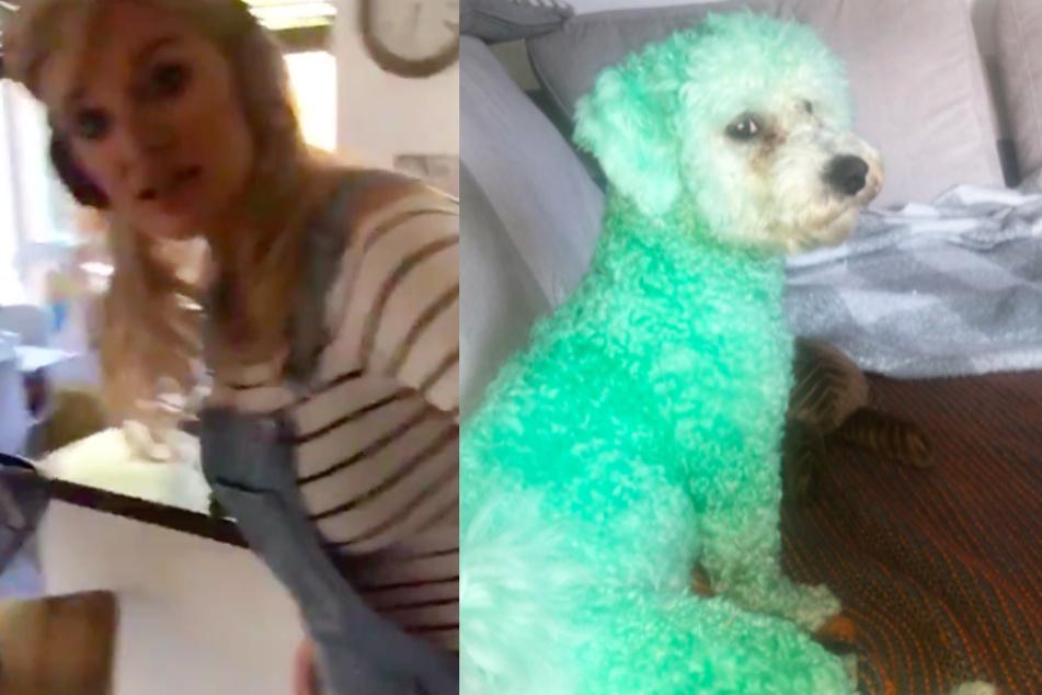 Mutter ist schockiert, als sie sieht, was ihre Tochter mit dem Hund gemacht hat
