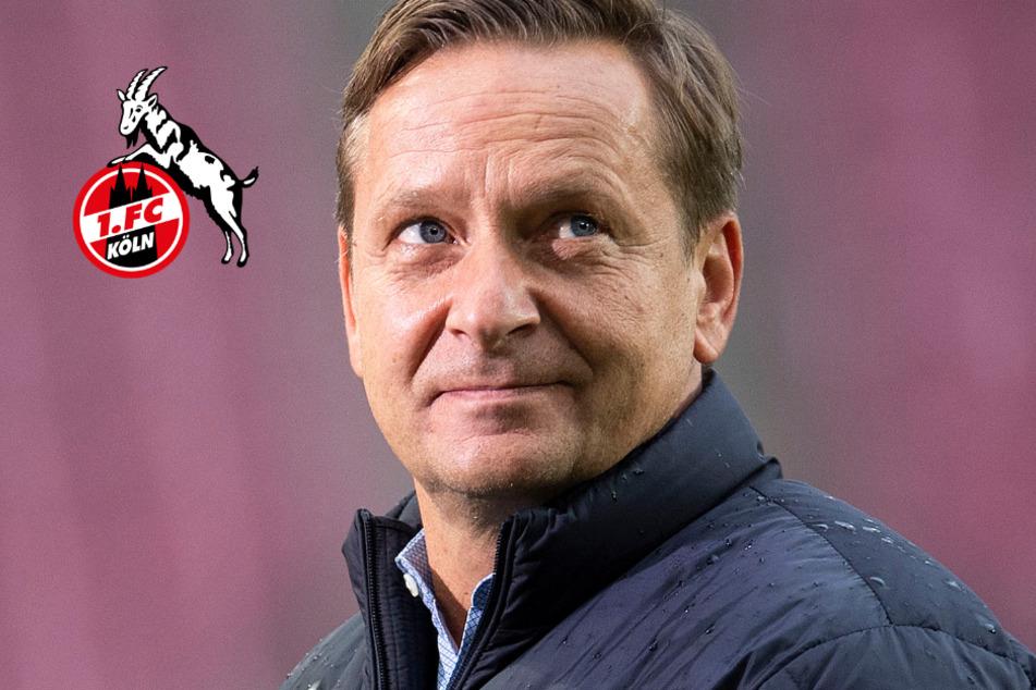 1. FC Köln: Sportchef Heldt hält an Trainer Gisdol fest - vorerst