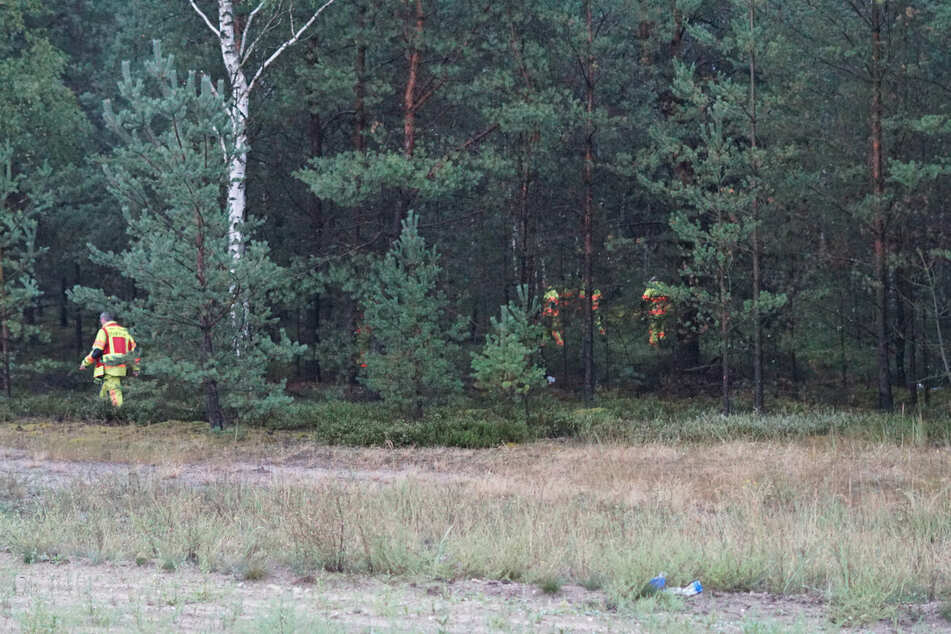Da nicht klar war, ob Personen unter Schock in den angrenzenden Wald geflüchtet sind, wurde dieser ebenfalls durchsucht.