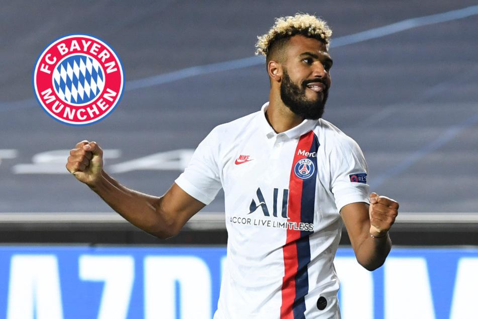 FC Bayern tütet Transfer ein! Eric Maxim Choupo-Moting kommt an die Isar