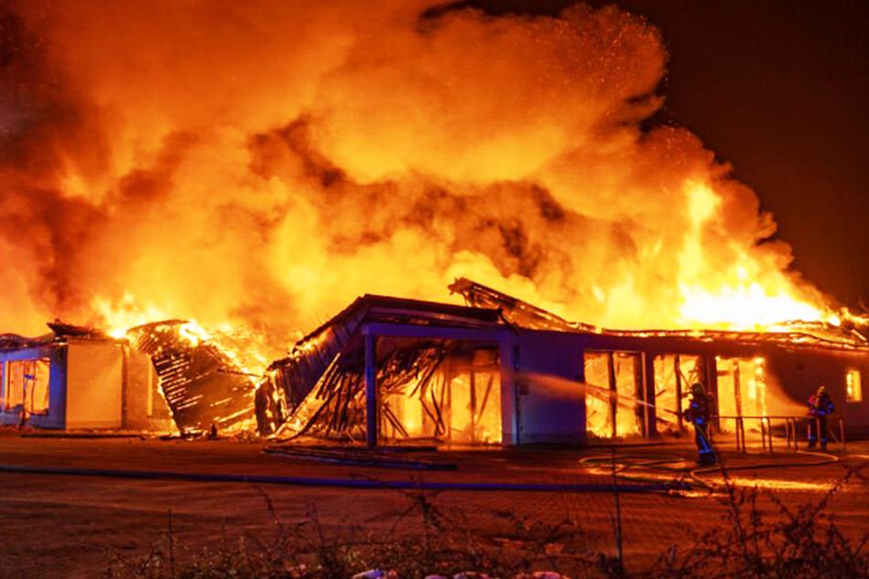 Flammeninferno: ALDI-Supermarkt brennt komplett nieder