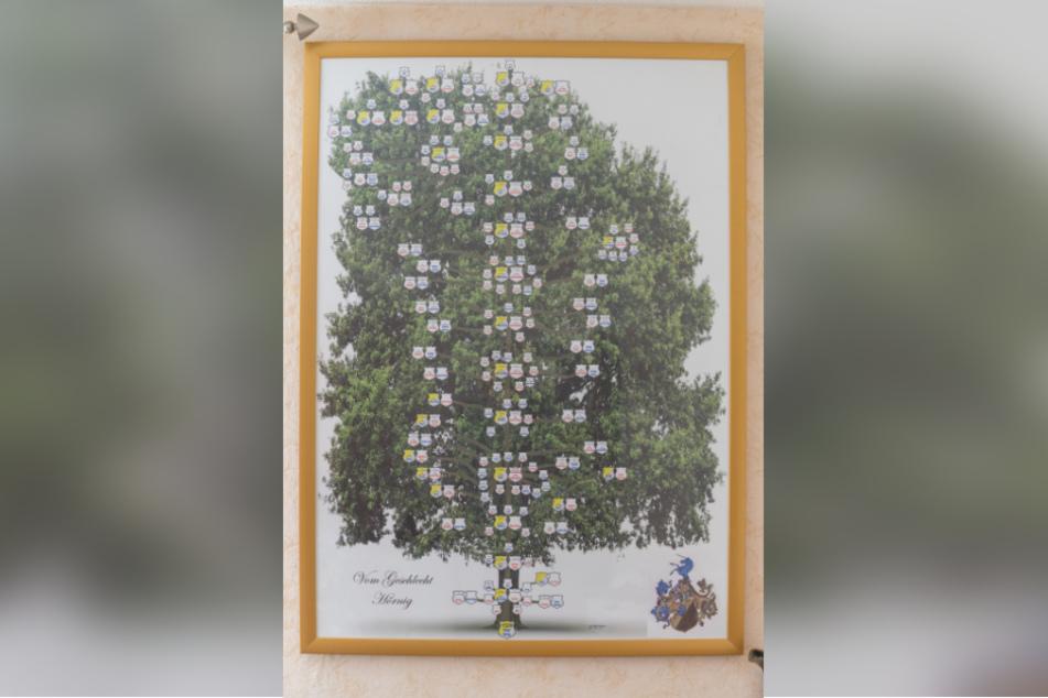 Der Stammbaum der Familie reicht zurück bis in Spätmittelalter, zeigt 14 Generationen mit ihren Verzweigungen.