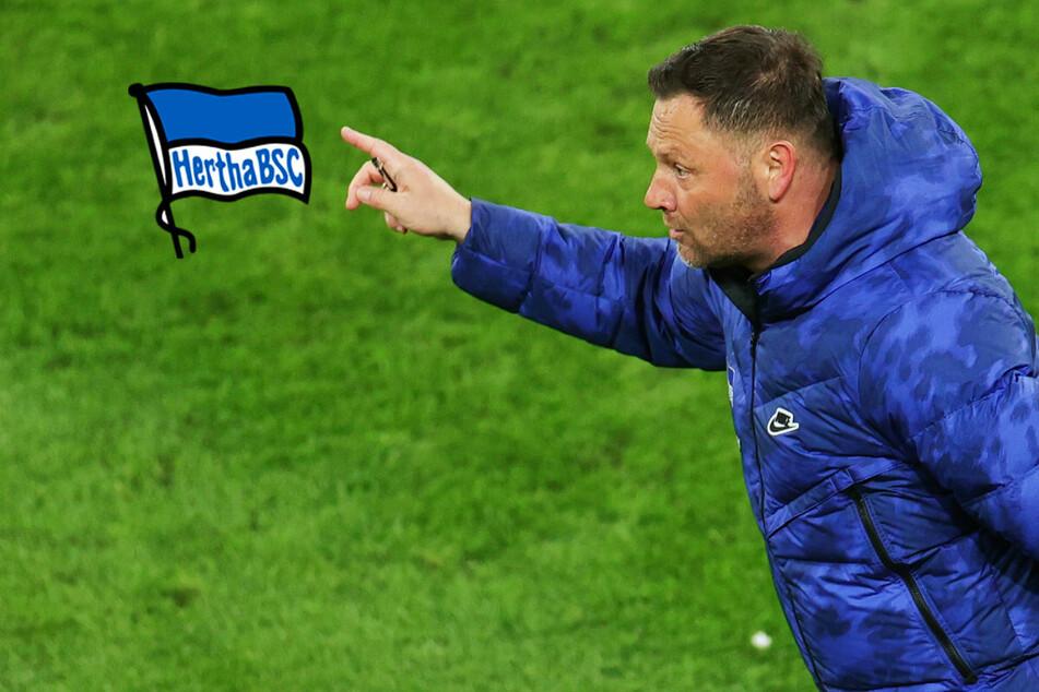Nach Klatsche gegen Borussia Dortmund: Hertha-Coach Pal Dardai nimmt Endspurt ins Visier