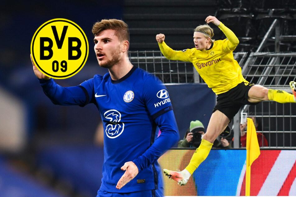 Tuchels Chelsea kämpft um BVB-Star Haaland und will Werner wohl zum Tausch anbieten!