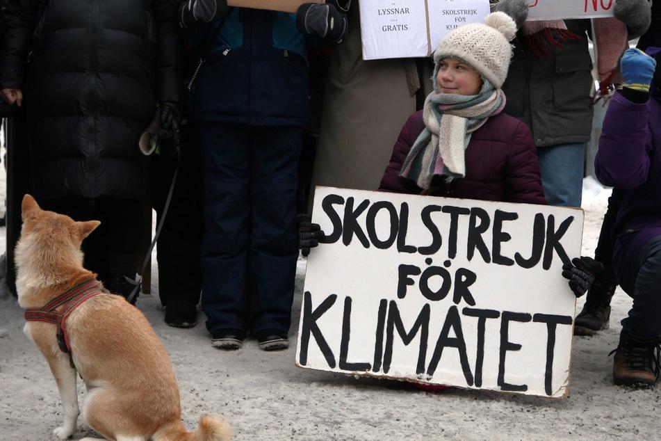 """Stockholm: Die Schwedin Greta Thunberg demonstriert vor dem Reichstag in Stockholm für mehr Klimaschutz mit einem Plakat """"skolstrejk for klimatet"""" (Schulstreik für das Klima). Seit fast zwei Jahren fordert Greta Thunberg unermüdlich mehr Einsatz im Kampf gegen die Klimakrise."""