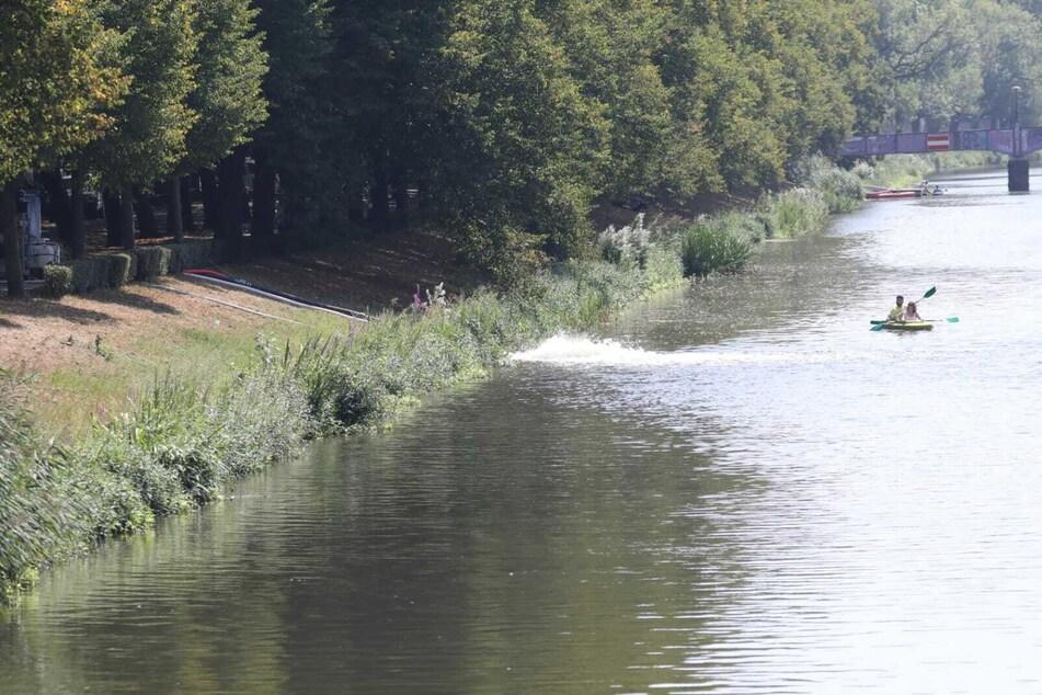 Das Wasser des Inselteichs wird ins nahegelegene Elsterflutbett gepumpt.