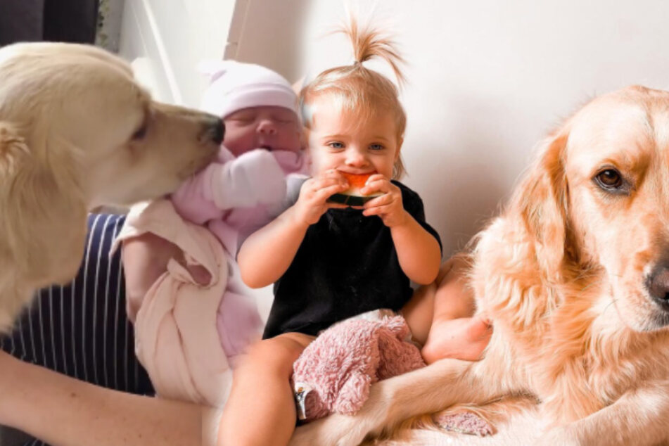 Dog and baby duo is sweeter than any chocolate bunny!