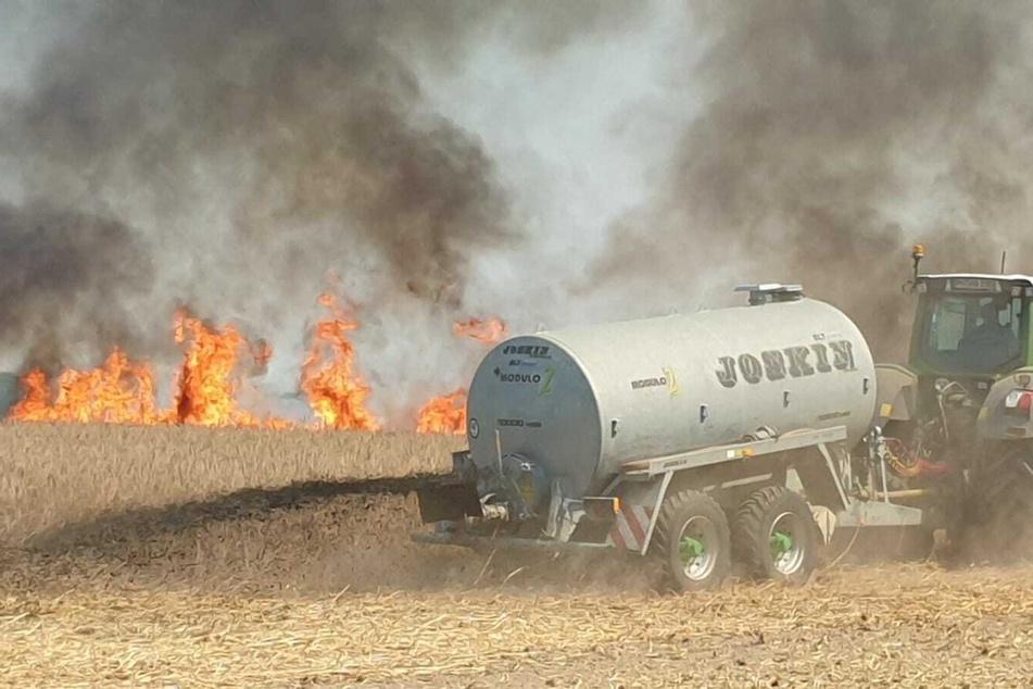 Auf einem Getreidefeld in Brandenburg ist am Samstagmittag ein Feuer ausgebrochen.