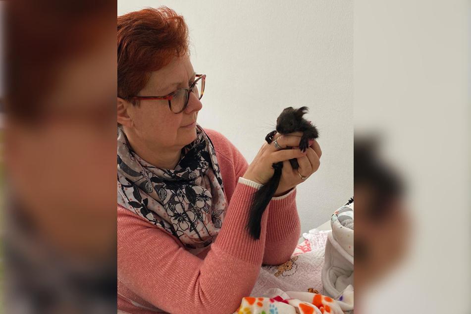 Jacqueline Günther (56) rettet Nager in Not. Ihr neustes Findelkind heißt Asterix.