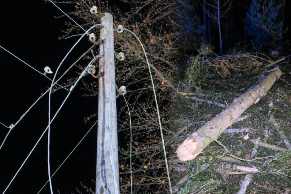 Sturmböe reißt Baum um und kappt Stromleitung
