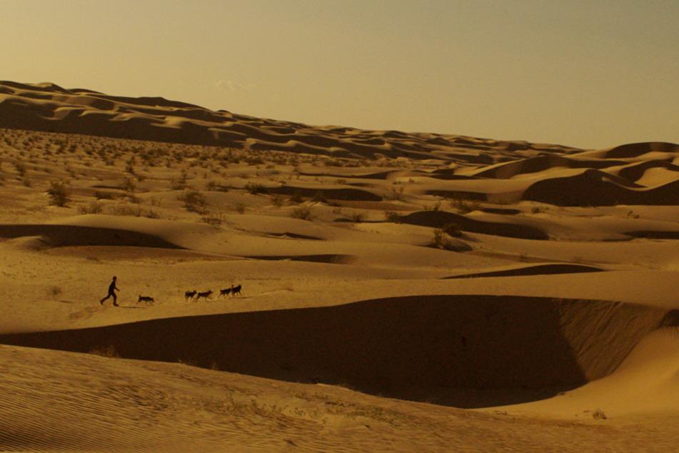 ...und dann in einer endlosen Wüste.
